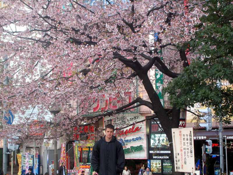 Me with some Sakura in Ueno Koen