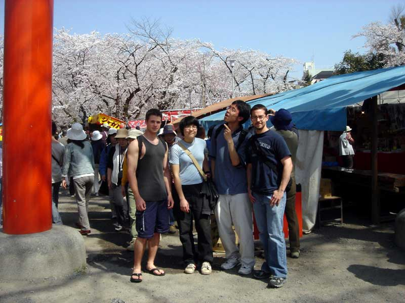 Cherry-blossom viewing in Kyoto last May