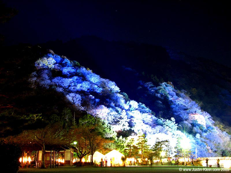 The mountains behind Arashiyama illuminated by a blue spotlight.