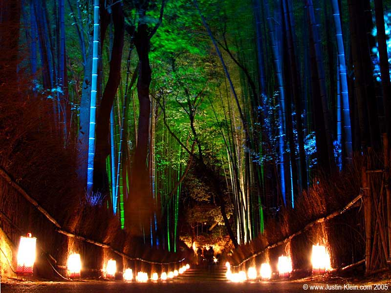 An illuminated bamboo forest in Arashiyama.  Can you believe those colors?