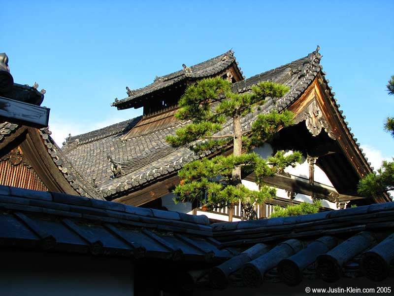 Clear skies and old-fashioned rooftops.  Kyoto.