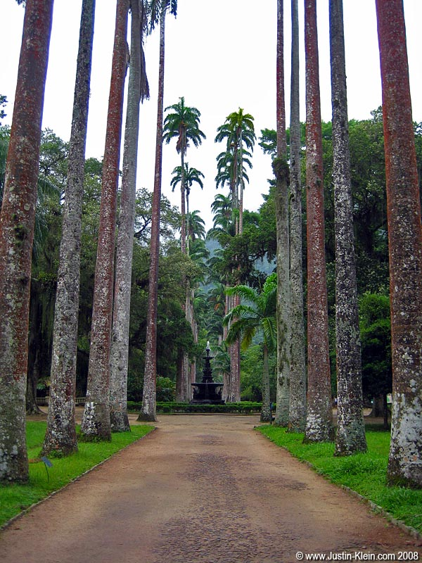 Rainy day activity #2: Jardim Botanico, the botanical gardens.  Apparently a lot of people really like it here.  My reaction was &#8220;meh.&#8221;  Maybe because I <i>knew</i> that they were botanical gardens and not natural &#8211; I always like more of a &#8220;see-things-the-way-they-are&#8221; experience rather than to have things presented to me.  Which is why I almost never go to museums.