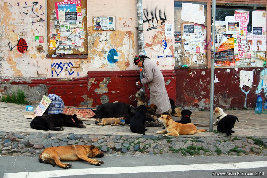 A dog lady in Andriyivsky Uzviz.  Am I the only one who's reminded of the Crazy Cat Lady from The Simpsons? : D