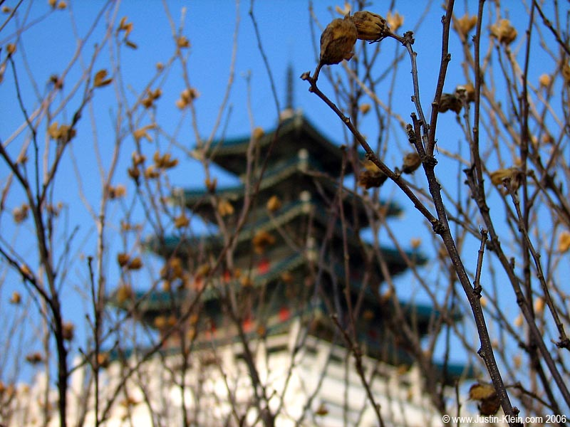 A pagoda in Seoul, South Korea