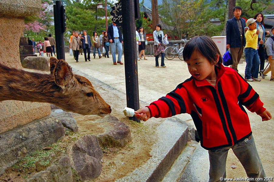 A little boy splits his ice cream with a hungry deer on Miyajima
